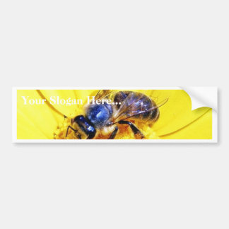 Bees Flowers Insects Bumper Sticker