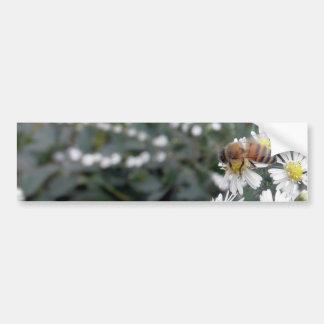 Bees Honey Bee Wildflowers Flowers Daisies Photo Bumper Sticker