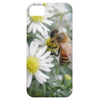 Bees Honey Bee Wildflowers Flowers Daisies Photo iPhone 5 Covers