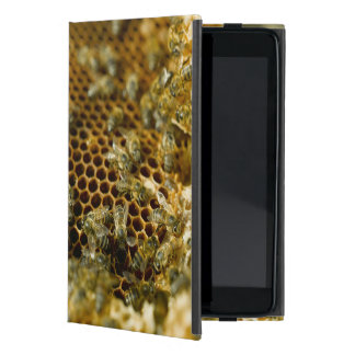 Bees In Hive, Western Cape, South Africa Cover For iPad Mini
