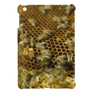 Bees In Hive, Western Cape, South Africa iPad Mini Cases