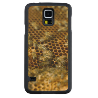 Bees In Hive, Western Cape, South Africa Maple Galaxy S5 Slim Case