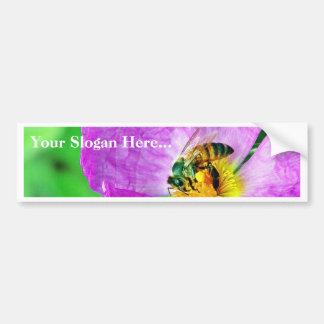 Bees Insects Pollen Bumper Sticker