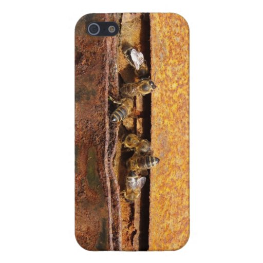 Bees iPhone 5/5S Cover