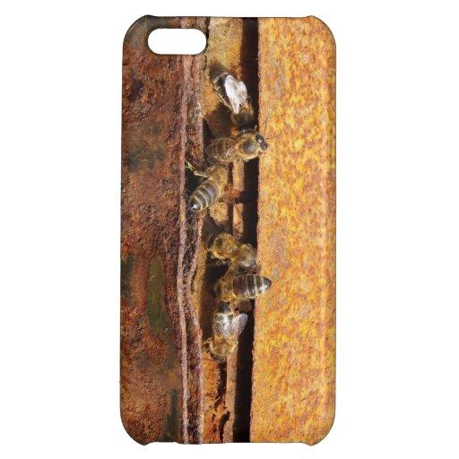 Bees iPhone 5C Case