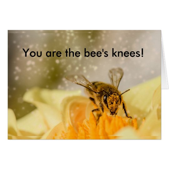 Bee's Knees Congratulations Card