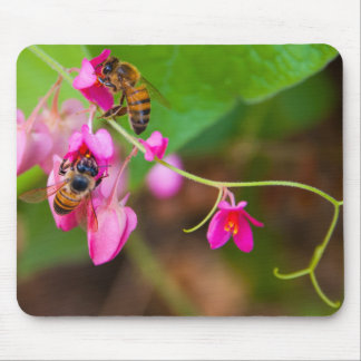 Bees On Coral Vine Flowers Photograph Mouse Pads