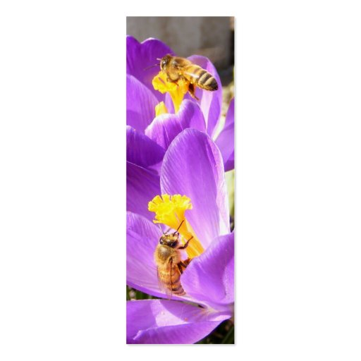 Bees on Crocus ~ profile card Pack Of Skinny Business Cards