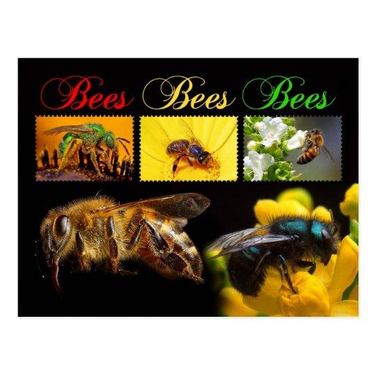 Bees pollinating postcard