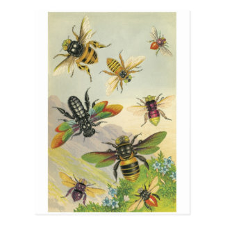 Bees Postcard