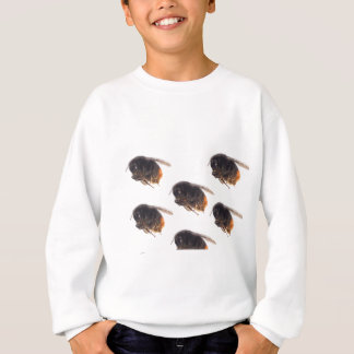 Bees Sweatshirt