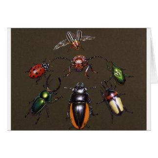 Beetle Circle of Fantasy Card