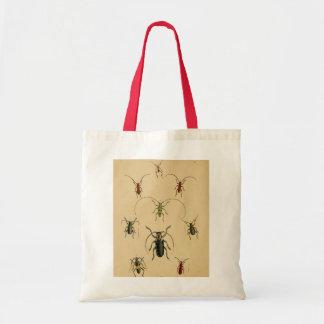 Beetle Entomology Tote Budget Tote Bag