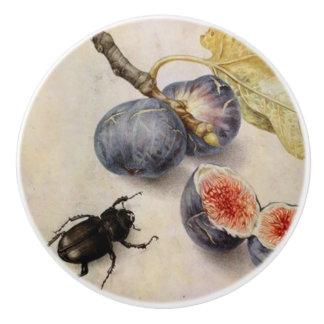 Beetle & Fig Ceramic Knob