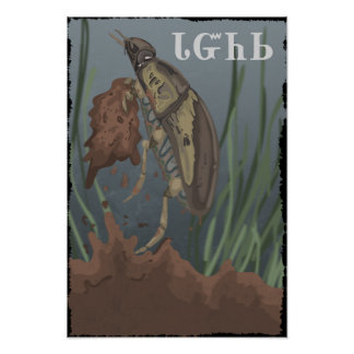 Beetle Finds Mud Poster