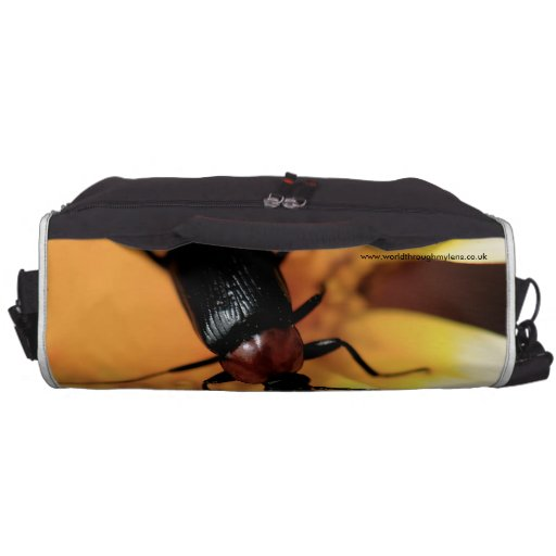 Beetle Bags For Laptop