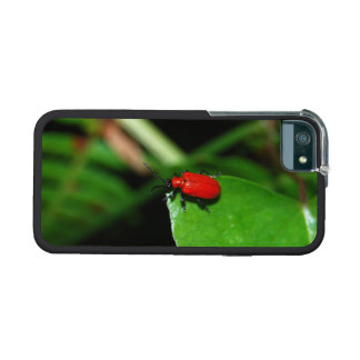 Beetle of shining red color in the leaves iPhone 5 cases