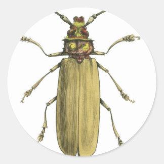 Beetle, Prionus Corticinus Round Sticker