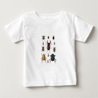 Beetle Varieties Baby T-Shirt