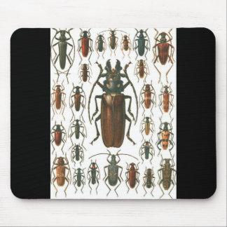 Beetles Beetles, so many beetles pattern picture. Mouse Pad