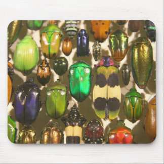 Beetles, Bugs and Insects Mouse Mat