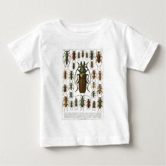 beetles-clip-art-5 infant T-Shirt
