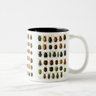 Beetles Two-Tone Coffee Mug