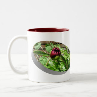 Before and After Blooms Two-Tone Coffee Mug