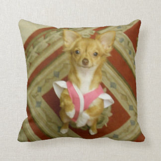 begging chihuahua cotton pillow