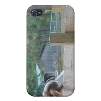 begging goat covers for iPhone 4