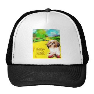 begin at the begining jpg mesh hat