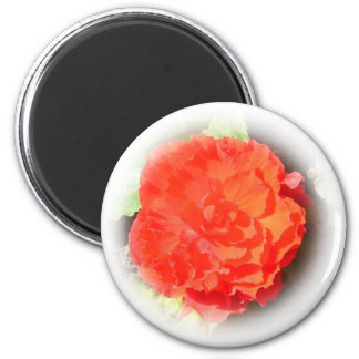 Begonia Flower 6 Cm Round Magnet