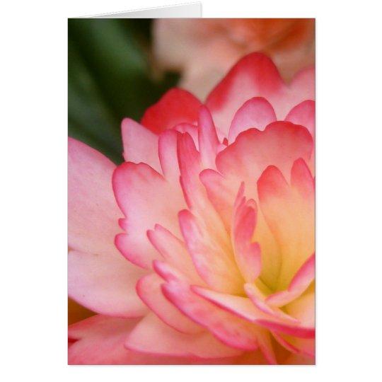Begonia Soul Blossom Card