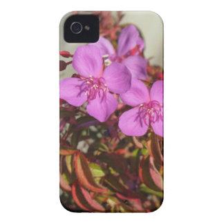 Begonias Blackberry Bold case