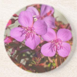Begonias coaster