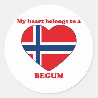 Begum Stickers