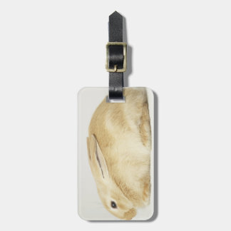 Beige bunny rabbit on white background 4 luggage tag
