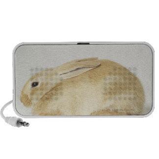 Beige bunny rabbit on white background 4 iPod speaker