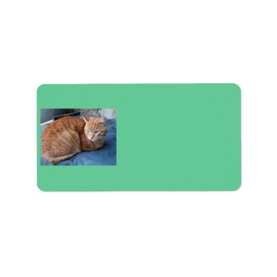 Beige Cat Address Label