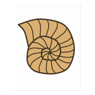 Beige Fossil Shell (Ammonoidea) Postcard