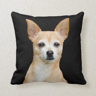 Beige painted chihuahua on black background cushion