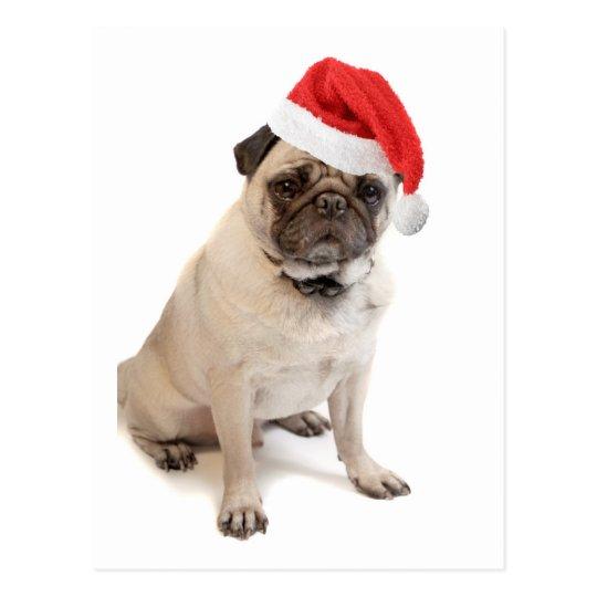 Beige pug with red santa hat on postcard