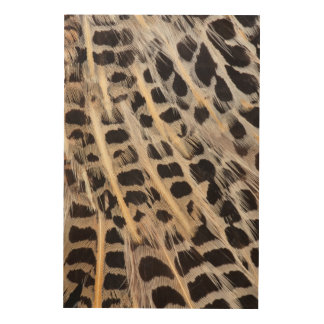 Beige Spotted Feather Abstract Wood Print
