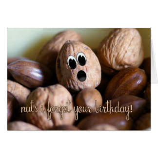 Belated Birthday Card - Nuts I Forgot Your Birthda