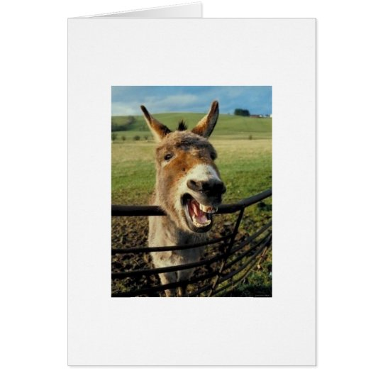 Belated Birthday Donkey Card