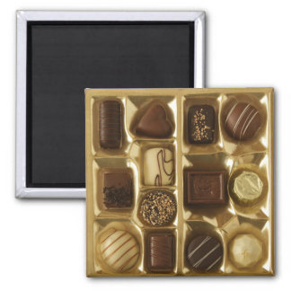 Belgian chocolate square magnet