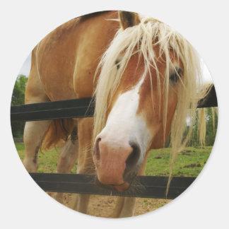 Belgian Draft Horse, Got Carrots? Classic Round Sticker