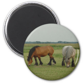 Belgian Draft Horse-one grey, one brown 6 Cm Round Magnet