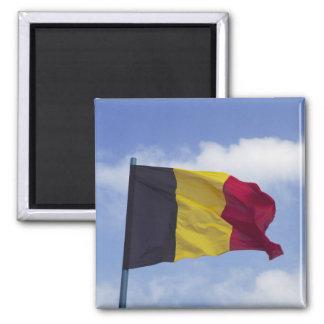 Belgian flag RF) Square Magnet
