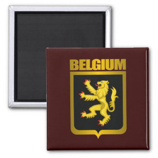 """Belgian Gold"" Square Magnet"